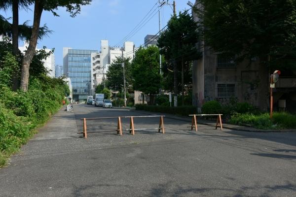 minamiaoyama16080505.jpg