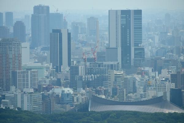 miyashita16080545.jpg