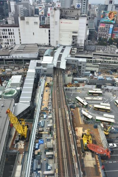 shibuya16100781.jpg