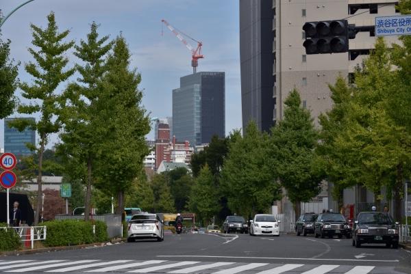 shibuya16100851.jpg