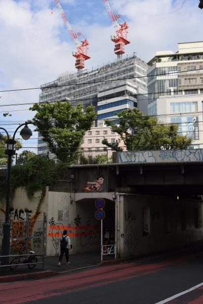 shibuya16100857.jpg
