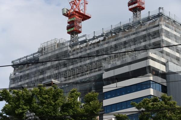 shibuya16100858.jpg