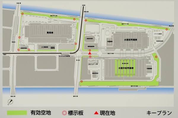 toyosu-market16090224.jpg