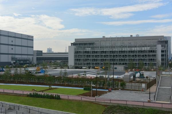 toyosu-market16090274.jpg