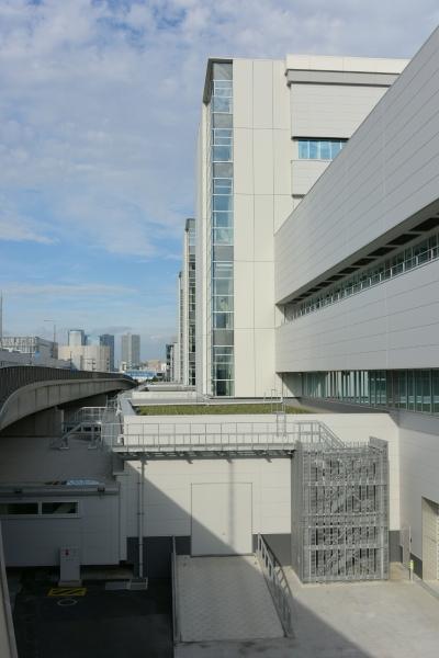 toyosu-market16090279.jpg