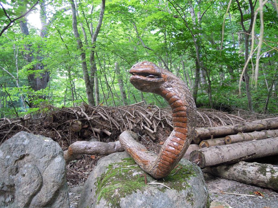 福島2 猪苗代8 蛇