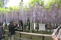 三大神社1