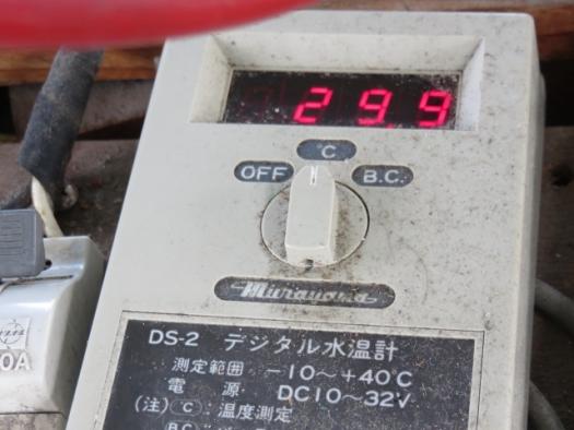 15時の表面温度29.9!!!