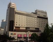 南側から見たホテル(そごう側の陸橋から)