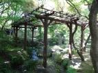 10:24 夏木の庭