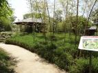 10:30 竹の庭