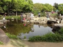15:50 ひぐらし池
