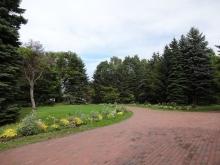緑のセンター前 花壇