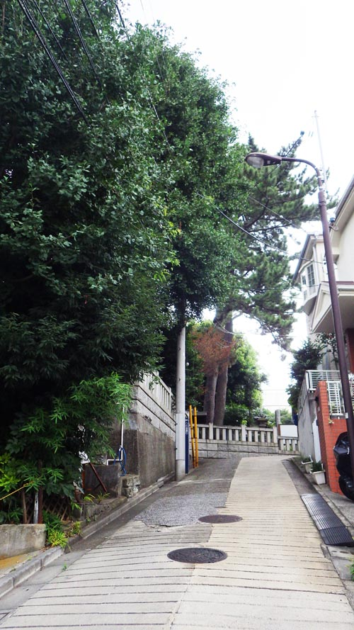 八の坂から望む後霊神社
