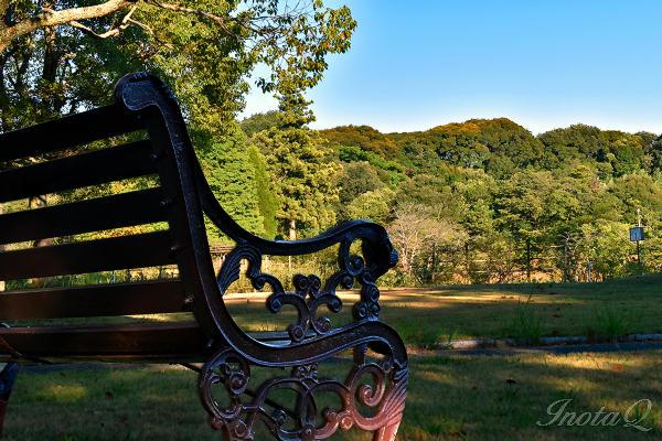 江汐公園のベンチと風景