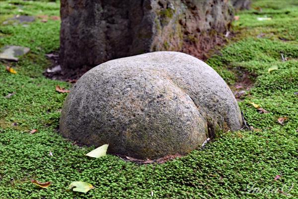 とある庭園の石_0063a