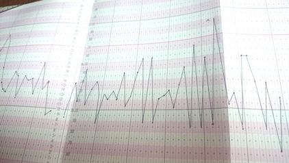 基礎体温表2