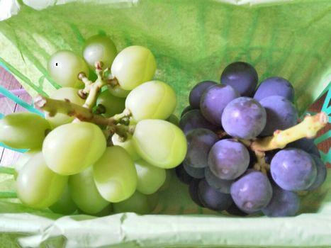 買った葡萄
