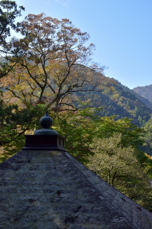katsuragawa_16_11_7_3.jpg