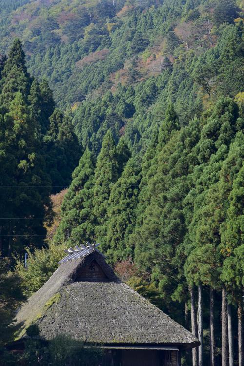 katsuragawa_16_11_7_6.jpg