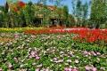 ⑦お花畑と花の家
