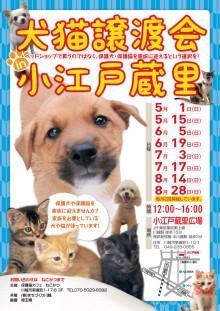 kawagoe_chirasi5-8.jpg