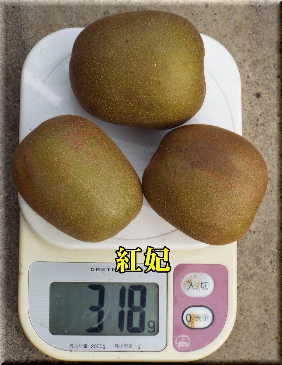1kouhi161021_016.jpg