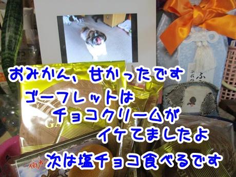 1016-01_201610161652282e1.jpg
