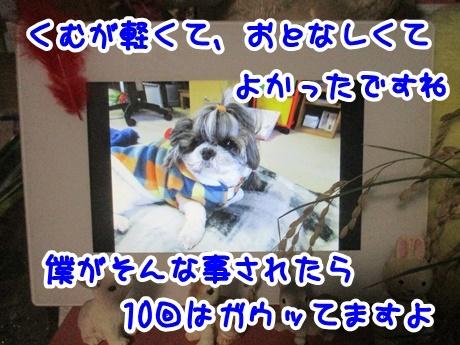1107-11_201611071952218ce.jpg