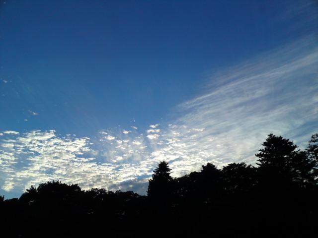 161018御所さんぽ③秋の空