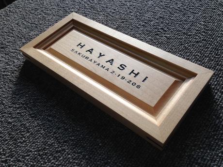 hayashi (5)