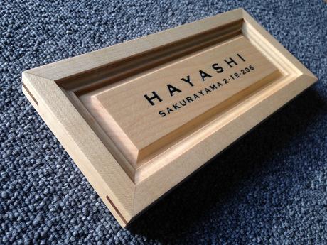 hayashi (8)