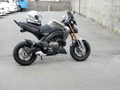 Z125 (12)
