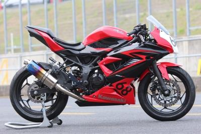 Ninja250SL   JP250 P1 (3)