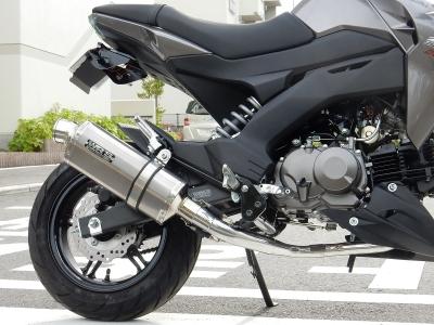 Z125PRO WRS full (5)