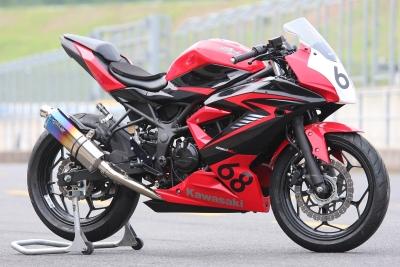 Ninja250SL   レース用 (1)