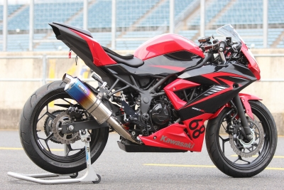 Ninja250SL   レース用 (4)