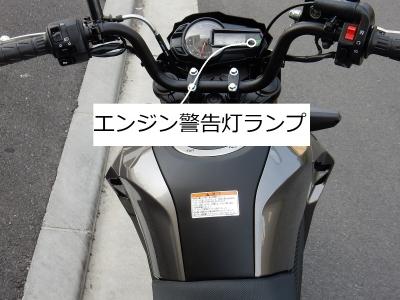DSCN8237.jpg