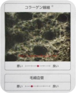 DSCN0587.jpg