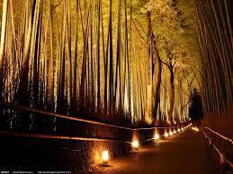 arashiyama2061549865564984984.jpg