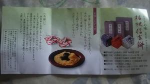 kikyousingenmoti3.jpg