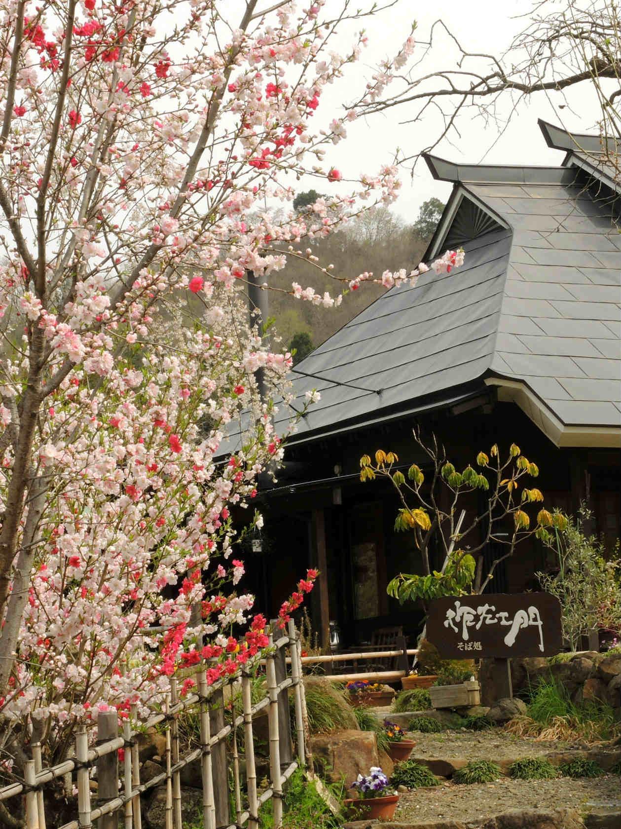 花の谷コースの茶屋2