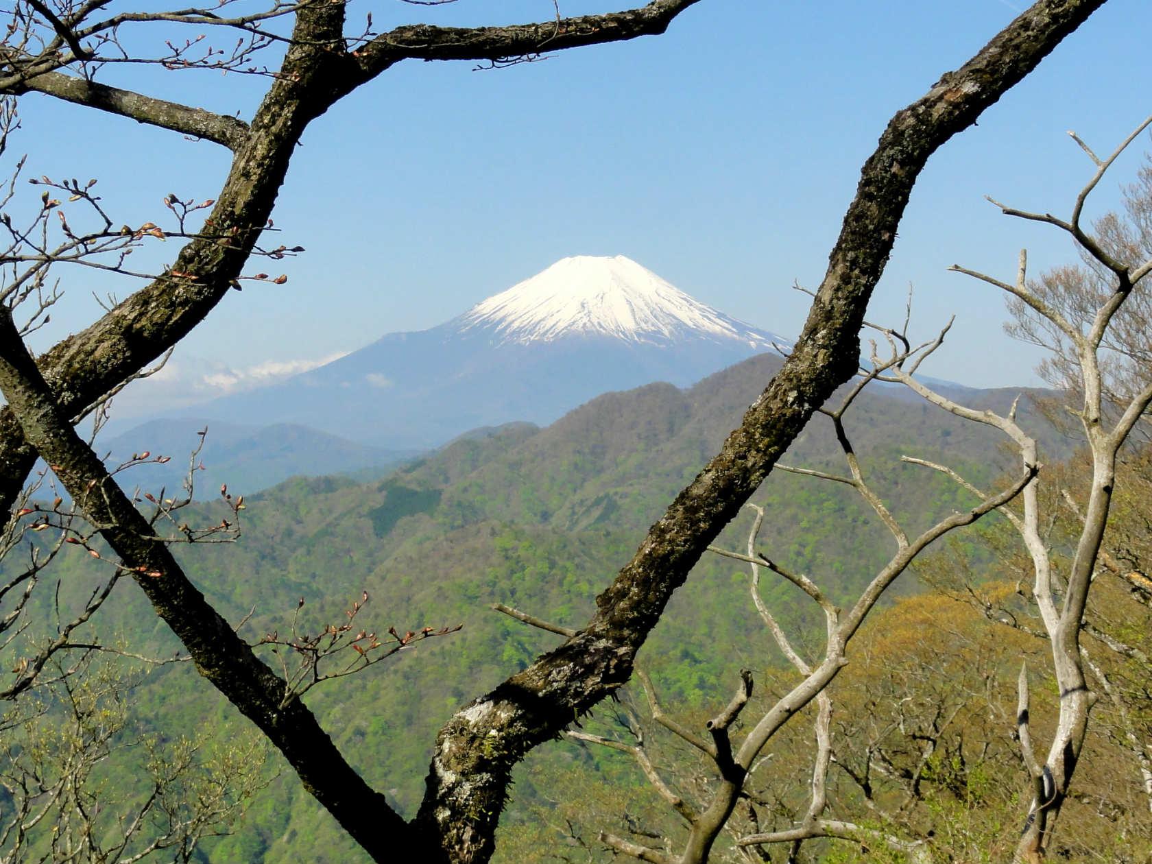 丹沢主稜線からの富士山
