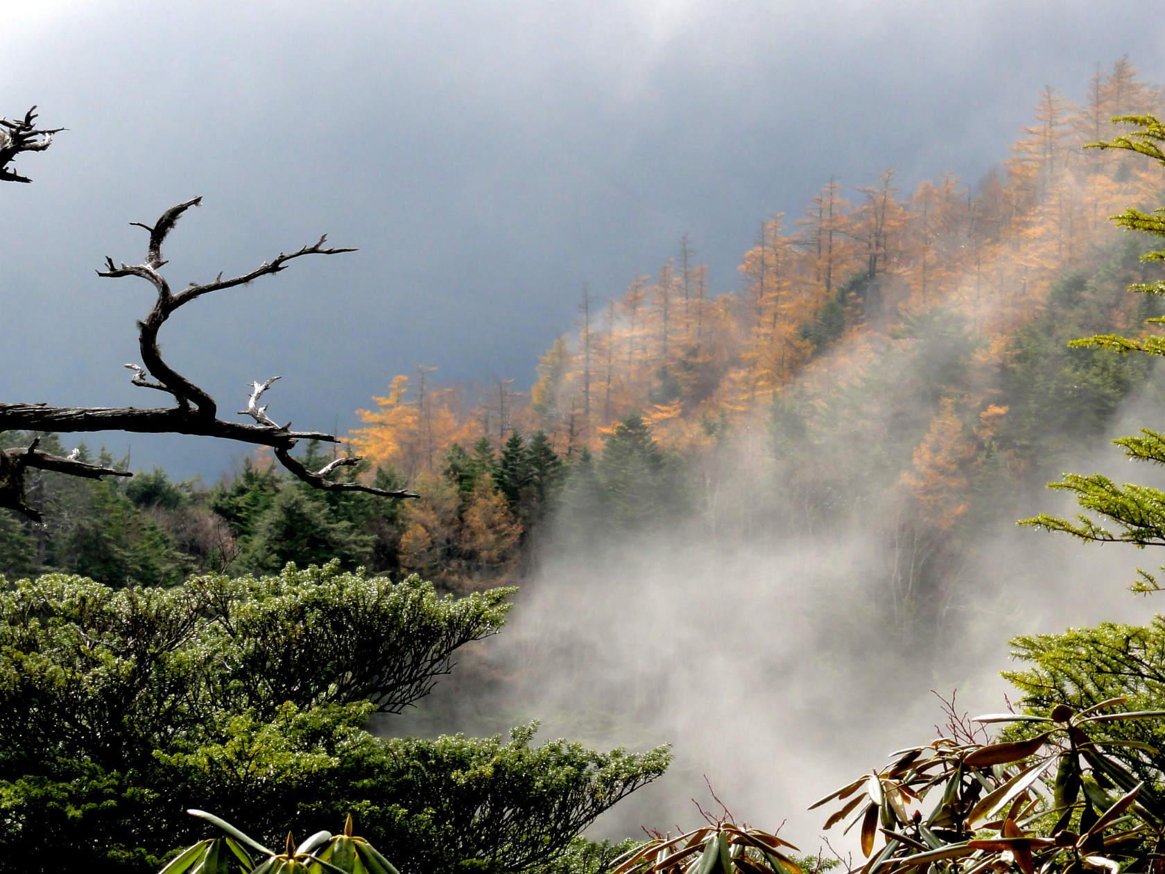 谷筋から雲がわいてくる
