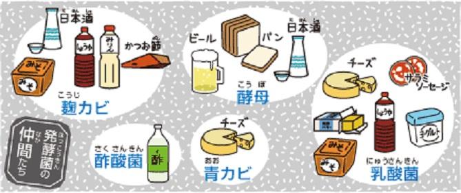 発酵食品その2