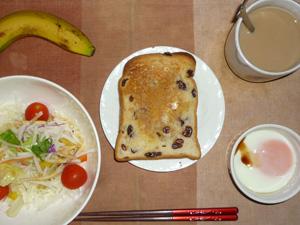 シナモンレーズントースト,サラダ(キャベツ、レタス、大根、トマト)青紫蘇・オリーブオイル,目玉焼き,バナナ,コーヒー