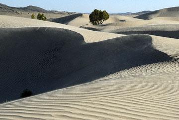 blog TAKE 100 Delta, 93N, Little Sahara, Dune 27678-8.9.07.jpg