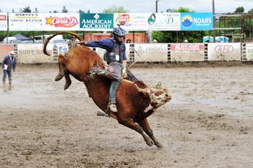blog 24 D3S Oakdale Rodeo, Bull Riding 2-14, A.J. Hamre (NS Los Molinos, CA)_DSC6089-4.10.16.(2).jpg