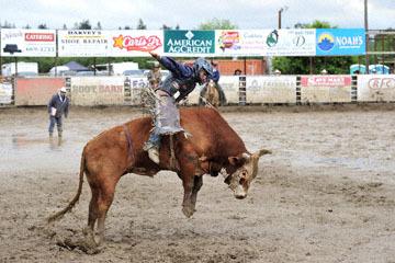 blog 24 D3S Oakdale Rodeo, Bull Riding 2-14, A.J. Hamre (NS Los Molinos, CA)_DSC6088-4.10.16.(2).jpg