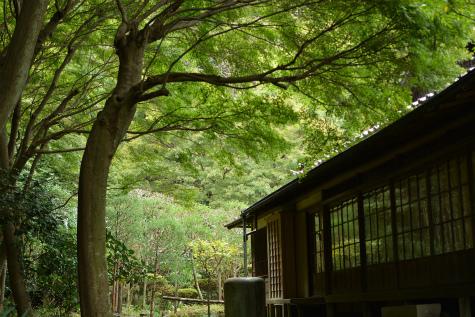 ブログ鎌倉8